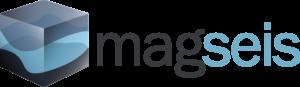 MagSeis_100mmLogoRGB-300x87
