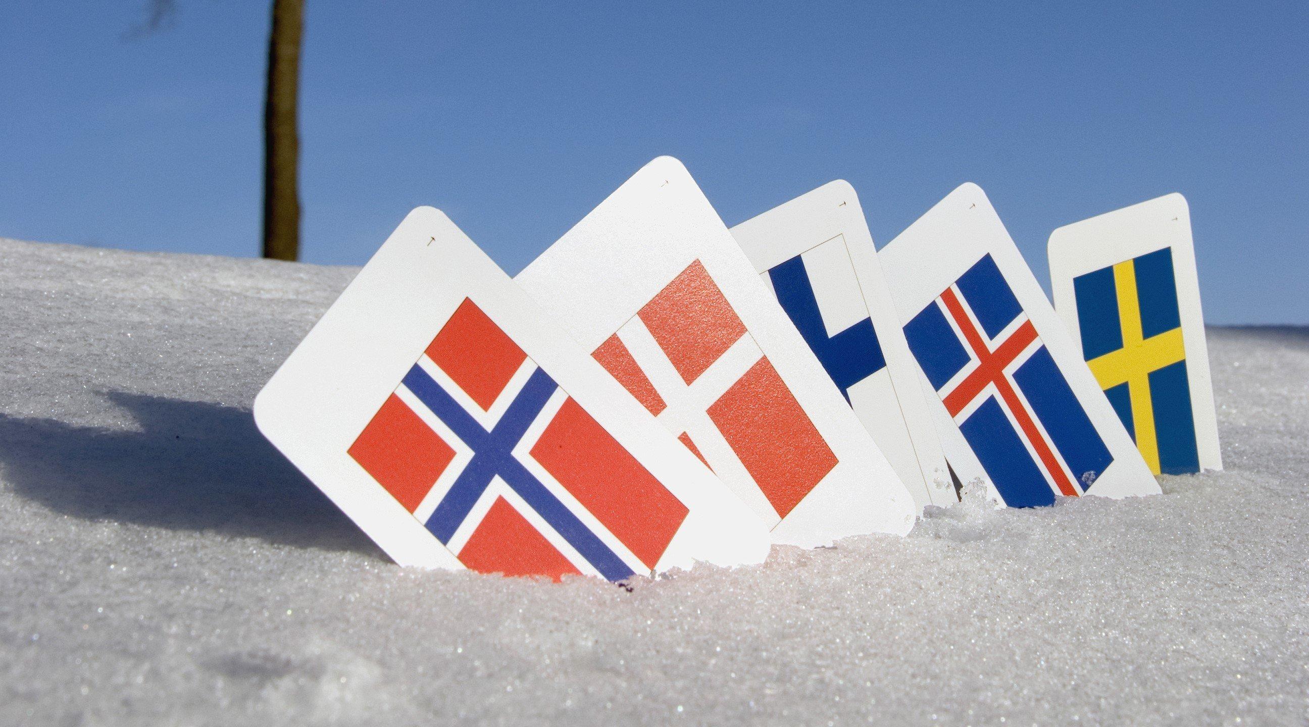Nordiske markede for HR-systemer